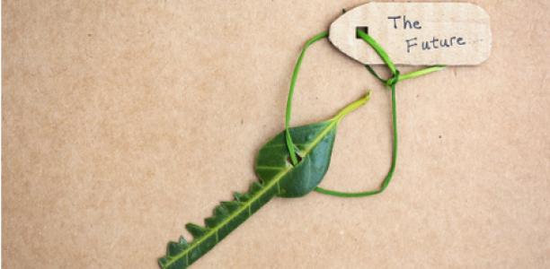 Focus sur la réglementation thermique 2020 : quels sont les enjeux ?